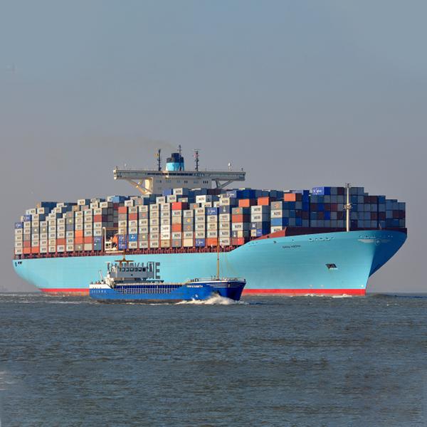 Marine diesel oil fuels the Emma Maersk