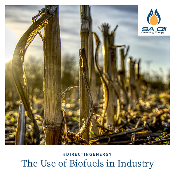 SA Oil discusses the use of biofuels in industry and the consequences thereof