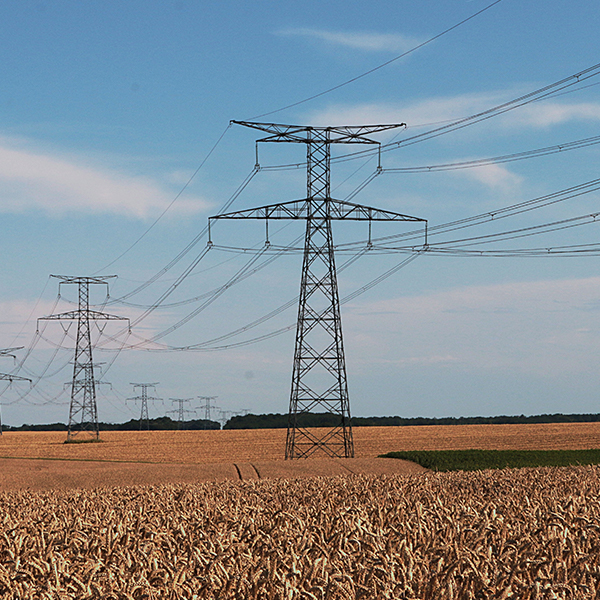 SA Oils discusses farms using the national power grid for power
