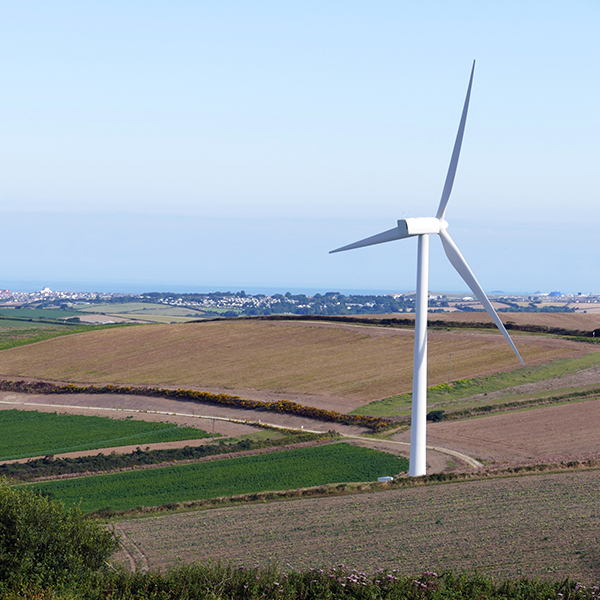 SA Oil discusses farms that use wind turbines for power